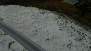早くも初雪!!